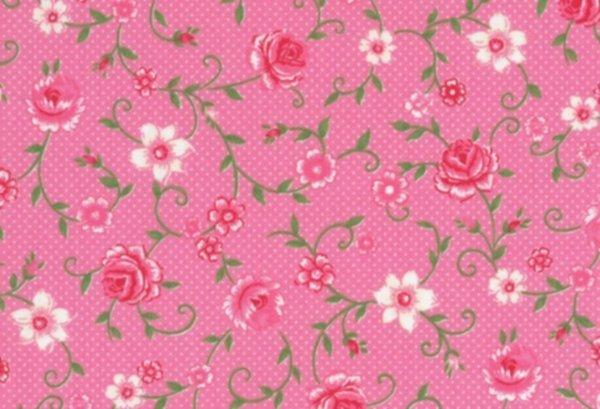 BW-Stoff Wales Rosenranken pink
