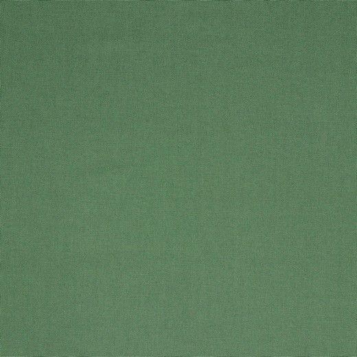 Canvas Uni - col. 036 pickle