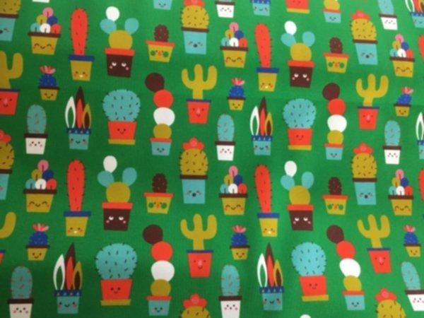 Bio JerseyCute Cactus