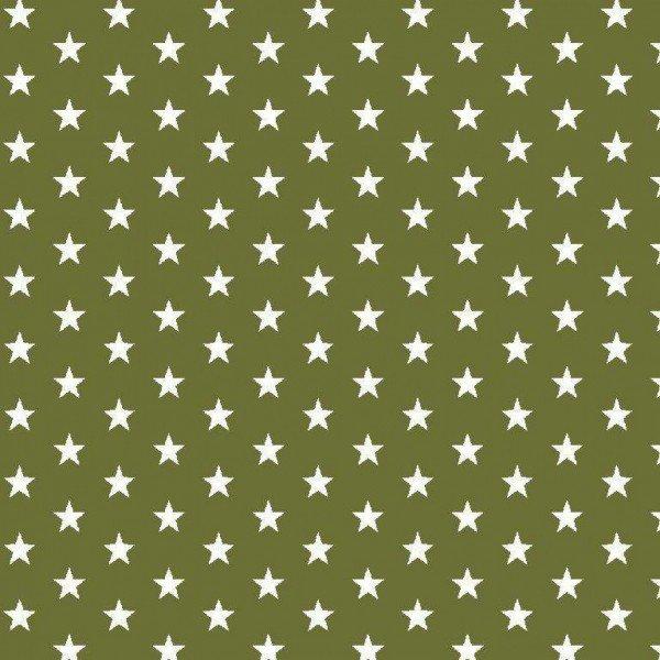 Baumwolle Design Petit Stars - col. 017 grün