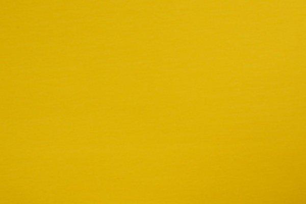 Jersey uni Baumwolle, gelb