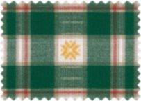 BW-Stoff Trondheim Karo Stern grün, weiss, rot