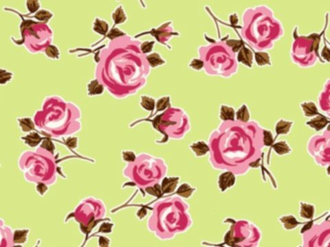 BW-Stoff Cornwall Rosen hellgrün, bunt